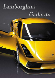 Business News Lamborghini Gallardo