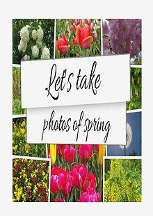 Let's Take Photos Of Spring