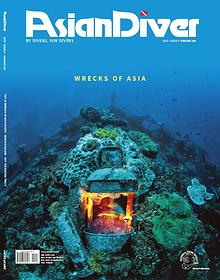 Asian Diver