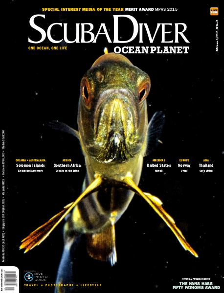 Issue 6/2015