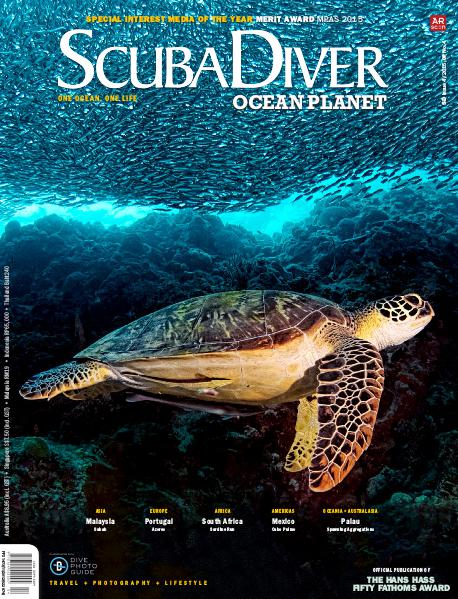 Issue 4/2015