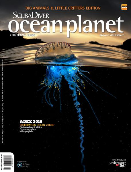 Issue 2/2016