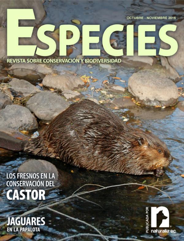 Especies 3-16 oct-nov octubre-noviembre
