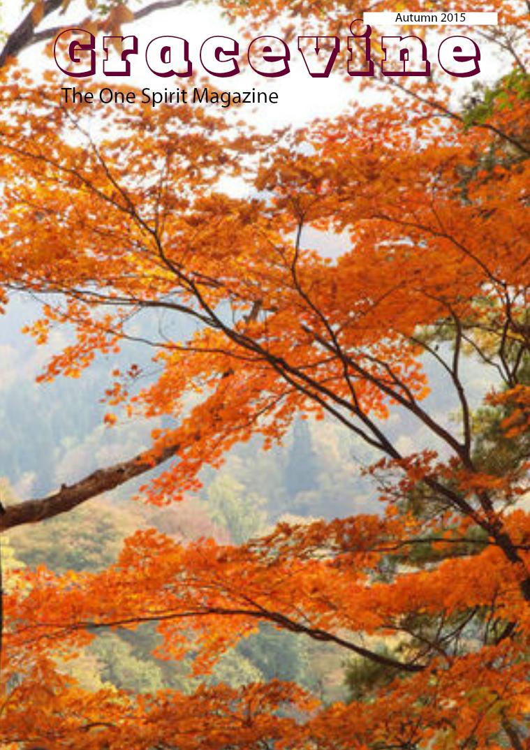 Gracevine Autumn 2015