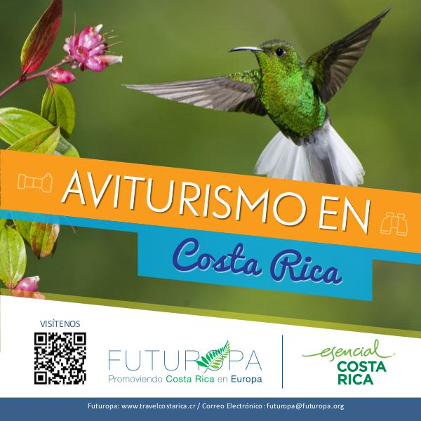 Aviturismo en Costa Rica I