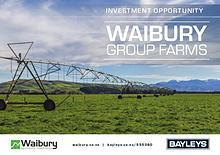 Waibury Group Farms Brochure