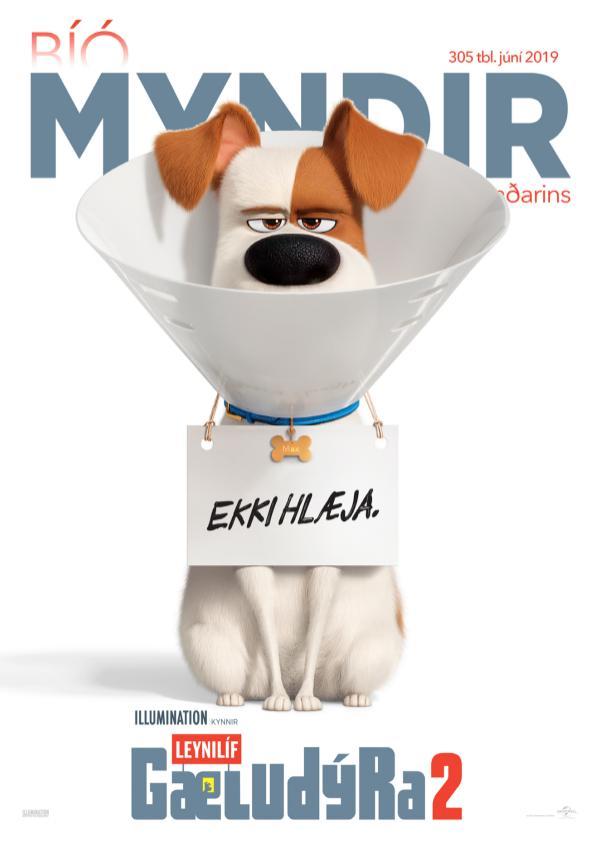 Myndir mánaðarins MM Júní 2019 DVD VOD Tleikir