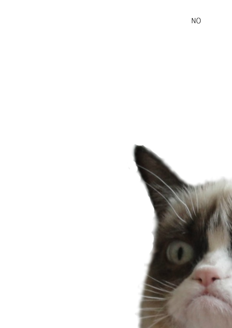 Android test Grumpy Cat