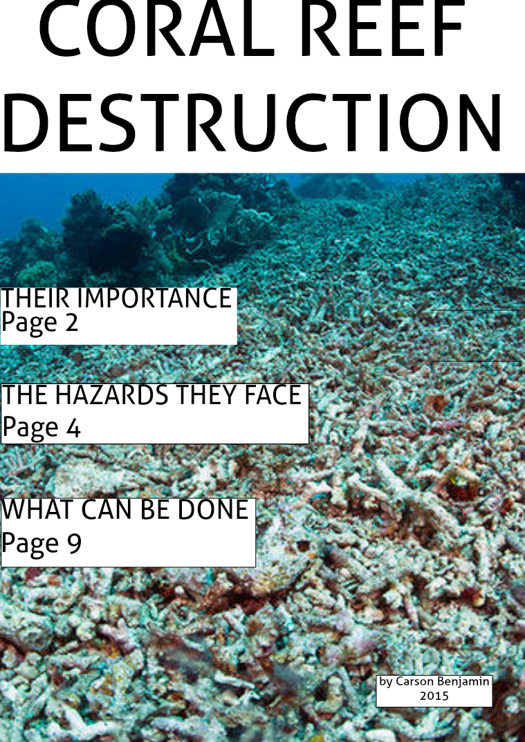 Coral Reef Destruction- by C. Benjamin June 2015