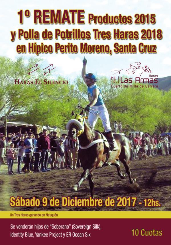 Remate Prod. 2015 y Polla Tres Haras 2018 Híp.Perito Moreno, Sta.Cruz RemateTHPeritoMoreno17