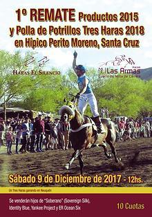 Remate Prod. 2015 y Polla Tres Haras 2018 Híp.Perito Moreno, Sta.Cruz