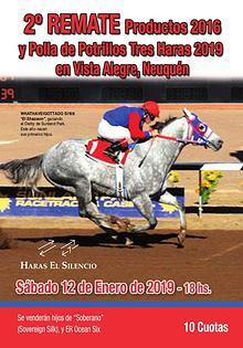 2º REMATE Tres Haras Productos 2016 y Polla 2019 en Vista Alegre, Nqn