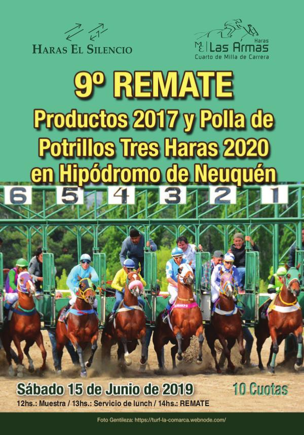 9º REMATE Productos 2017 y Polla de Potrillos Tres Haras 2020 Neuquen19