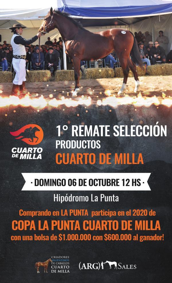 1º REMATE SELECCION CUARTO DE MILLA - Hipódromo La Punta CATALOGO CUARTO DE MILLA