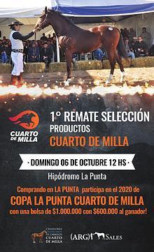 1º REMATE SELECCION CUARTO DE MILLA - Hipódromo La Punta