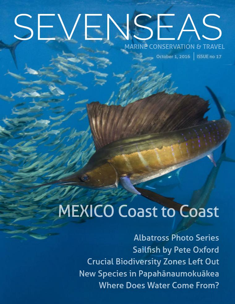 Issue 17, October 2016