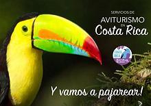 Costa Rica Birding B&B Catálogo Junio 2017