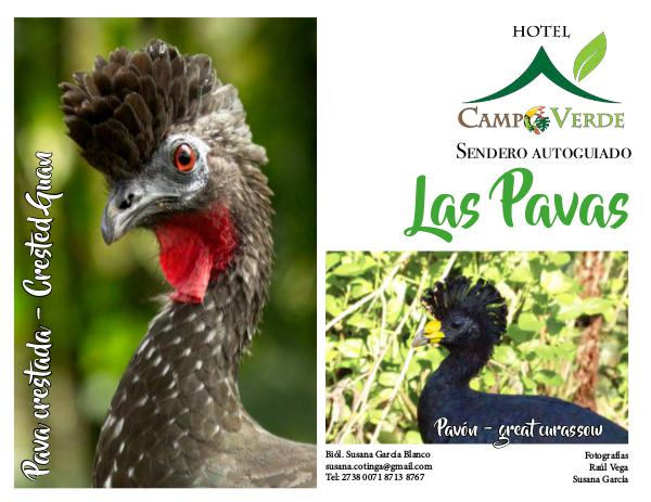Birding Sendero Autoguiado Las Pavas - Arenal Sendero autoguiado Campo Verde 1.2 ESP internet