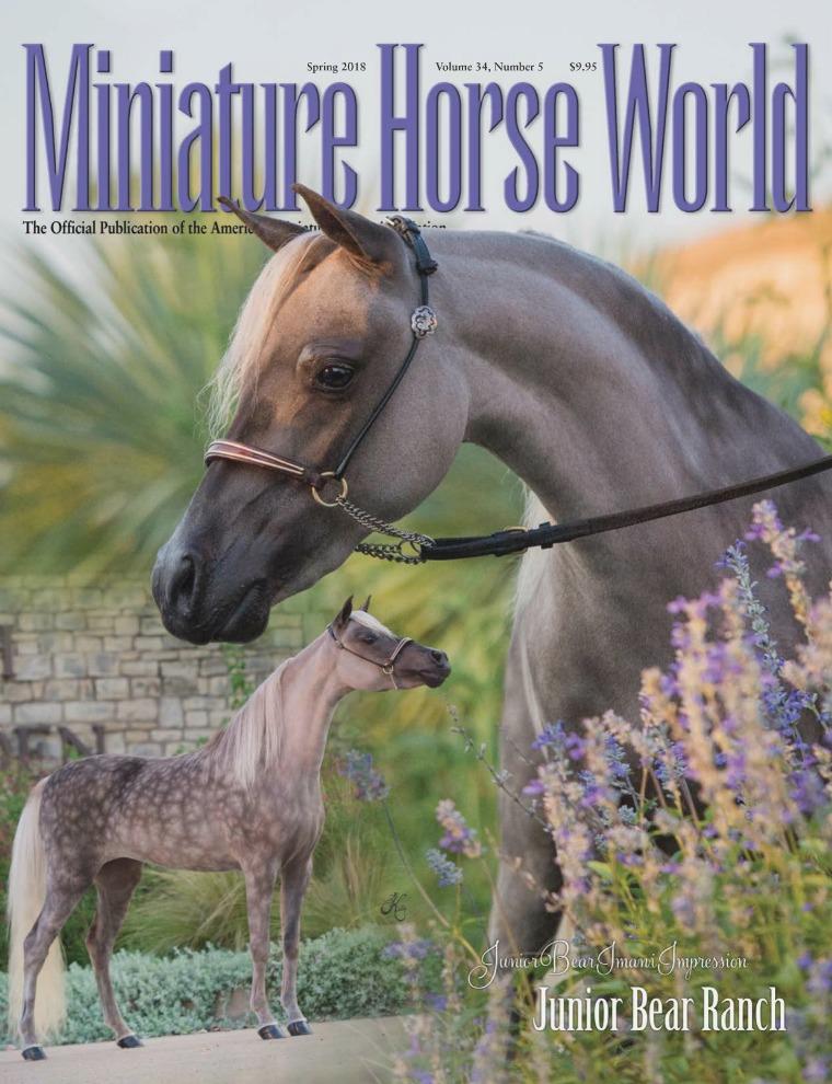 2018 Miniature Horse World Magazine SPRING, Volume 34,  Number 2