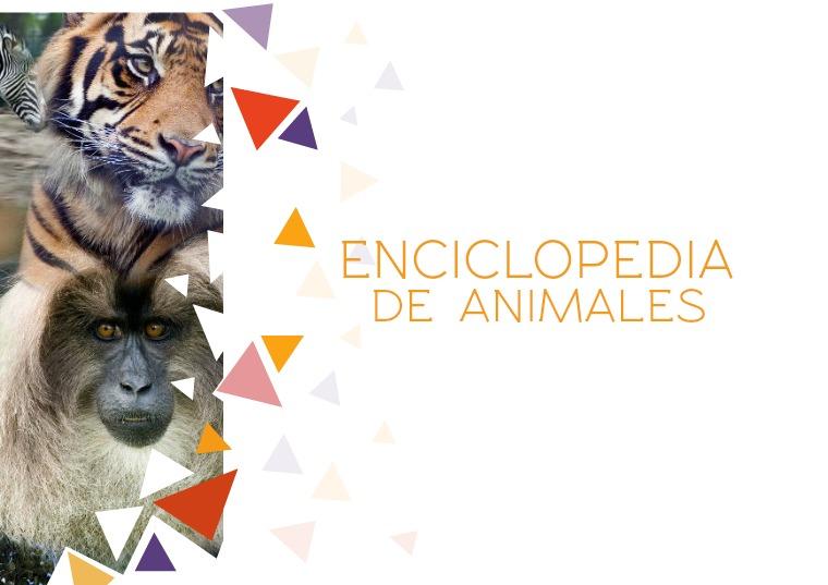 Enciclopedia de animales. Escuela N° 22 DE 3 Número 1.