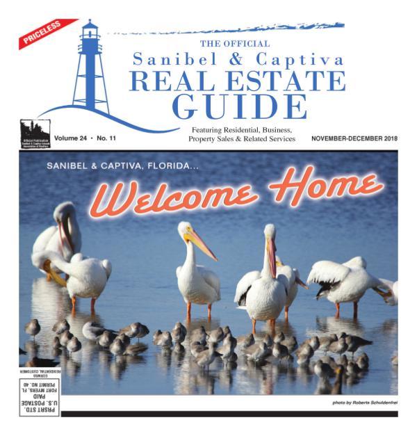 Real Estate Guide November 2018