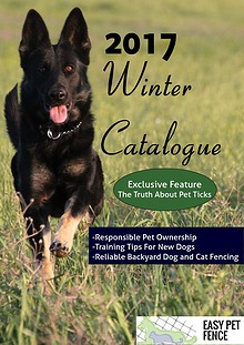 EasyPetFence Winter 2017