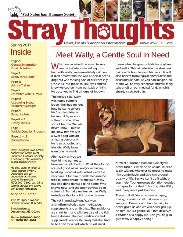 Stray Thoughts 2017 Volume 2 Newsletter