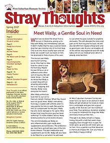 Stray Thoughts 2017 Volume 2