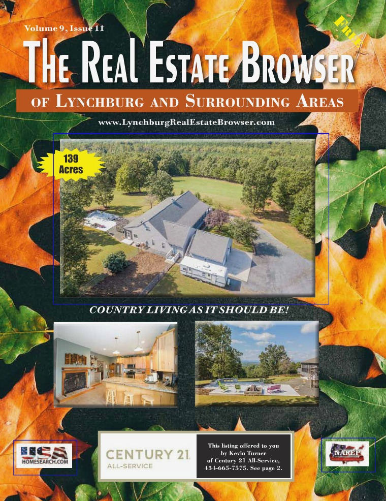 The Real Estate Browser Volume 9, Issue 11