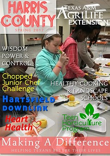 MAKING A DIFFERENCE NEWSLETTER - Issue 2, Volume 17 (Apr 2017)