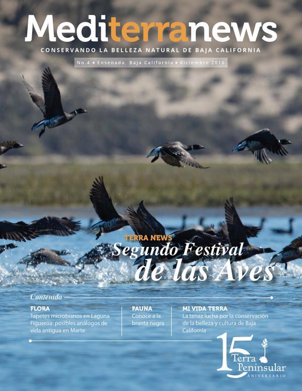 Mediterranews (Español) DICIEMBRE 2016