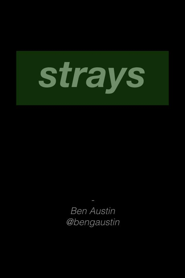 Strays BMX Strays 2