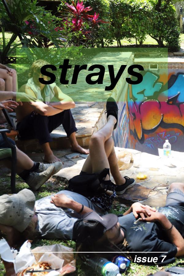 Strays BMX Strays 7