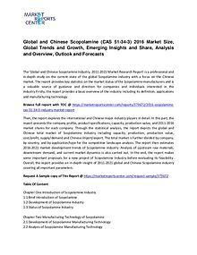 Scopolamine (CAS 51-34-3) Market Growth, Trends and Forecast