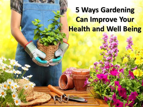 5 Ways Gardening Can Improve Your Health and Well Being 5 Ways Gardening Can Improve Your Health