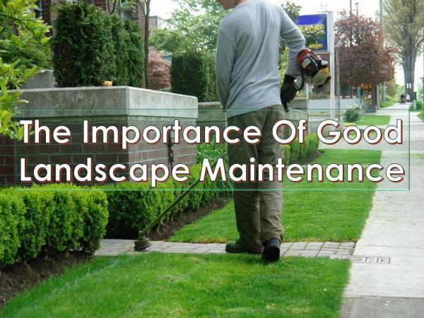 The Importance Of Good Landscape Maintenance The Importance Of Good Landscape Maintenance