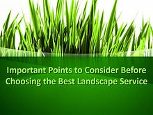 Points to Consider Before Choosing the Best Landscape Service