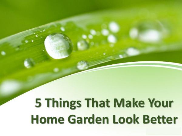 5 things that make your home garden look better 5 things that make your home garden look better
