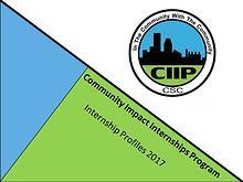 2017 CIIP Program Book