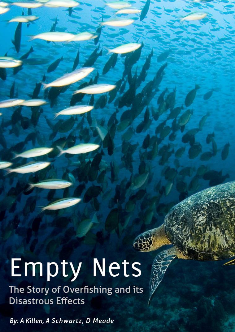 Empty Nets Empty Nets