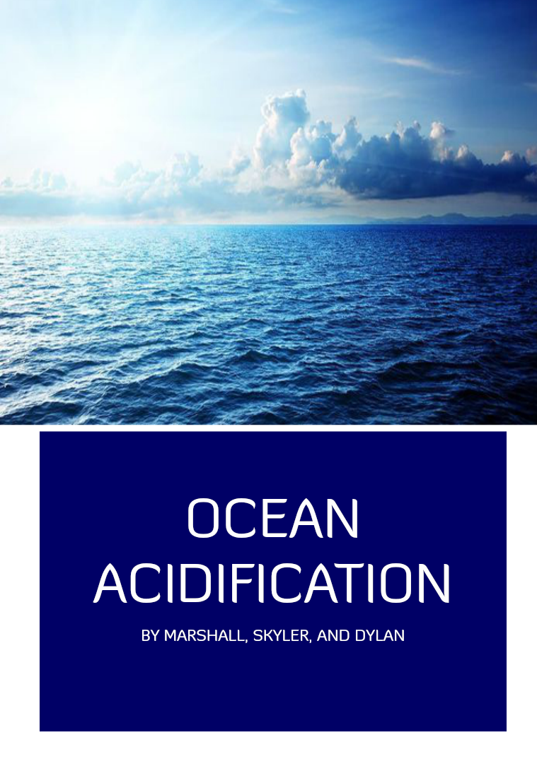 Ocean Acidification Environmental Science