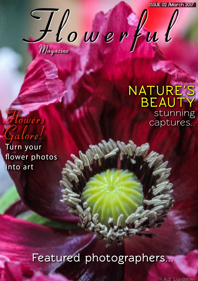 Flowerful Magazine Mar 2017