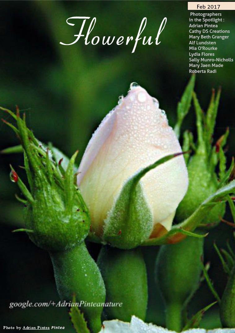 Flowerful Magazine Feb 2017