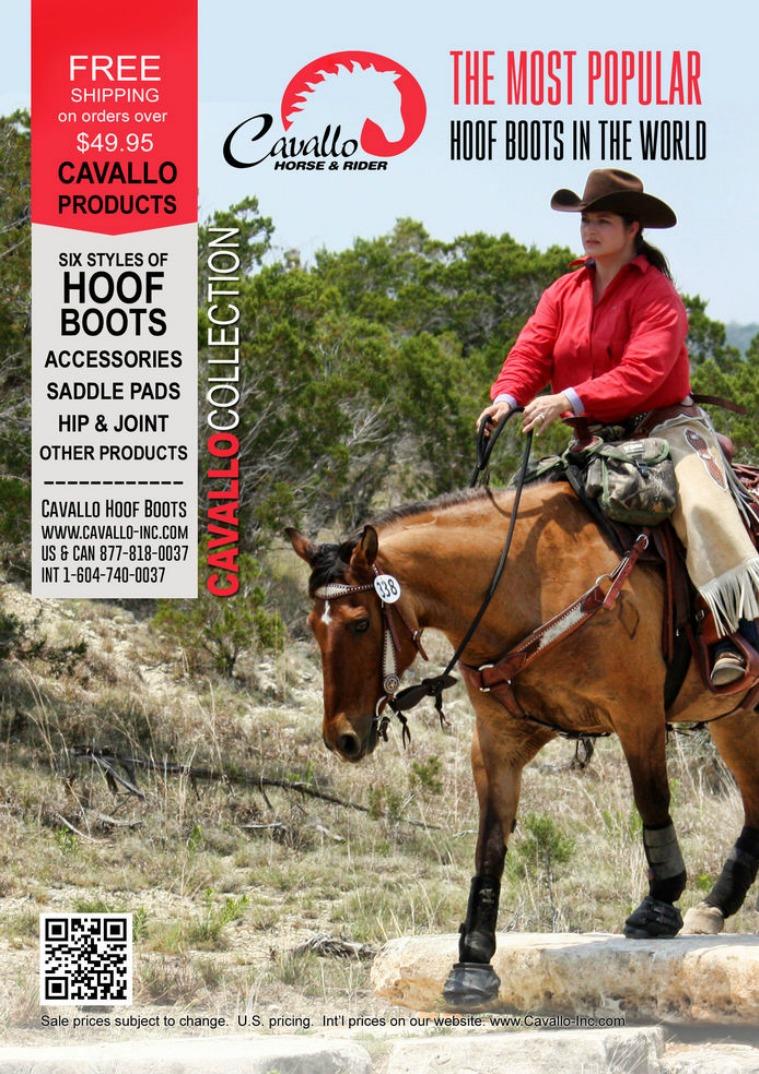 Cavallo Catalog 1
