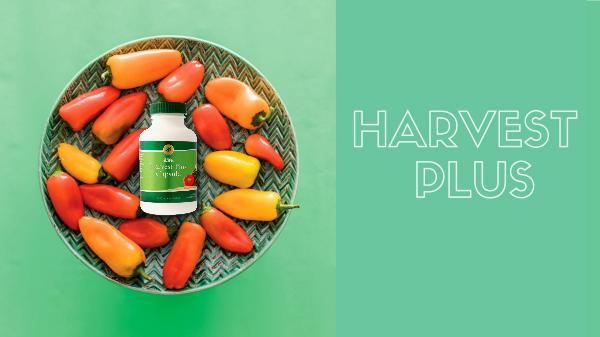 Product Slides Harvest Plus - CH