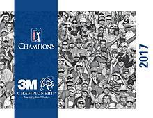 2017 3M Championship