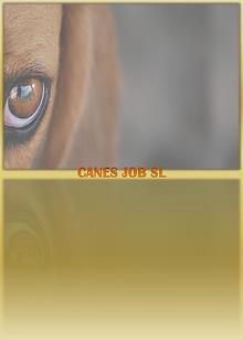 Canes Job