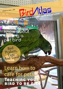 BirdAtlas Issue #1