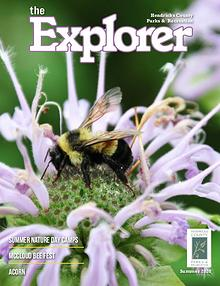 The Explorer Magazine
