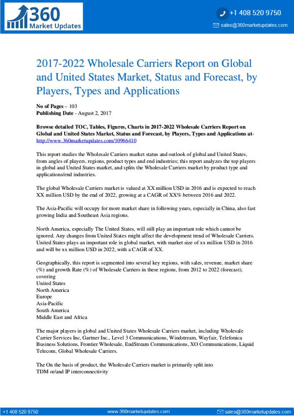 Wholesale-Carriers-Report-on-Global-and-United-Sta